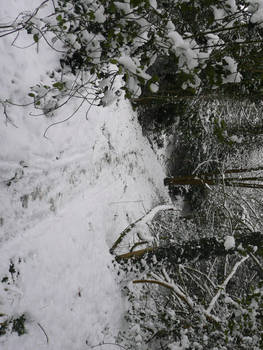 Snowy Path 2 by AdenarKaren