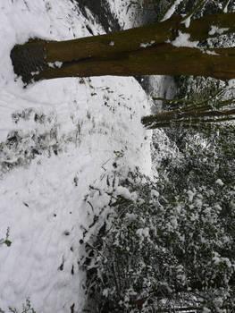 Snowy Path 3 by AdenarKaren