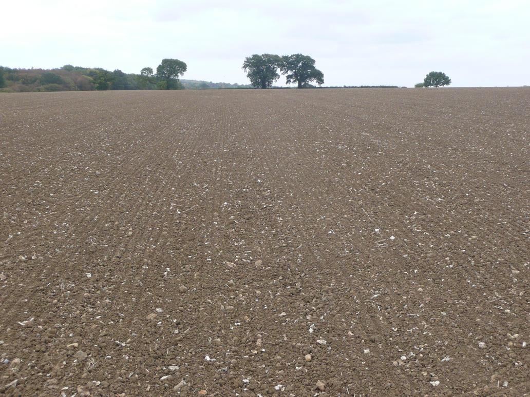 Bare Field 3 by AdenarKaren