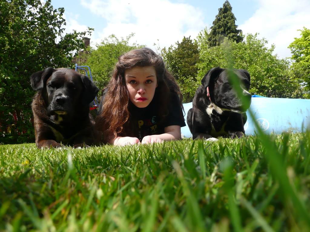 Two Very Odd Dogs by AdenarKaren