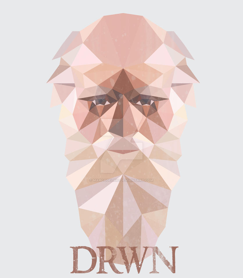 Low Poly DRWN Charles Darwin Portrait by marcodelrio
