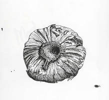 Garlic by DodosConundrum