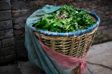 saag in doko