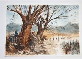 Willows by ewadzik