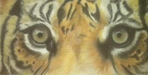 Tiger Eyes by ThomasFreckmann