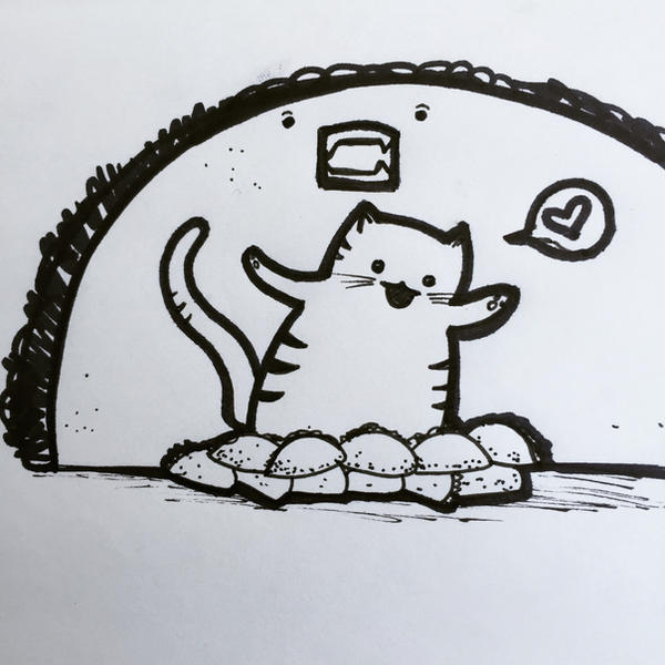 Cat and tacos by aunjuli