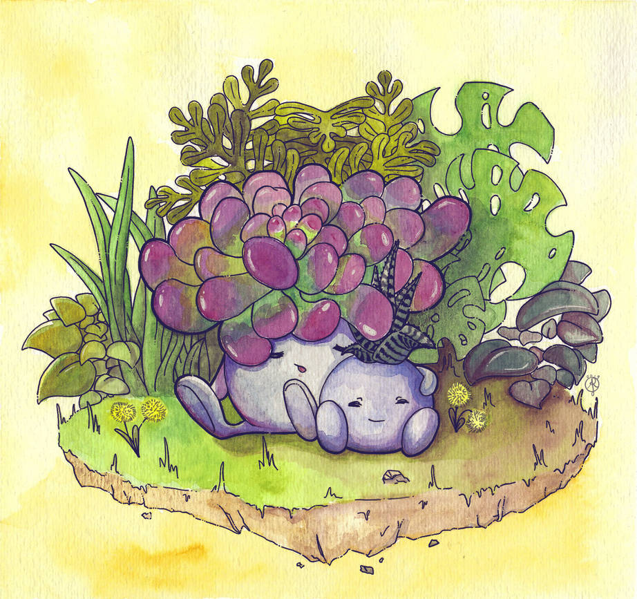 Sleepy Succulents by aunjuli
