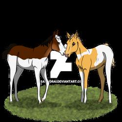 WOTW   Enya and Damira