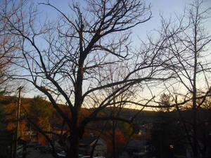 my window on the world 2