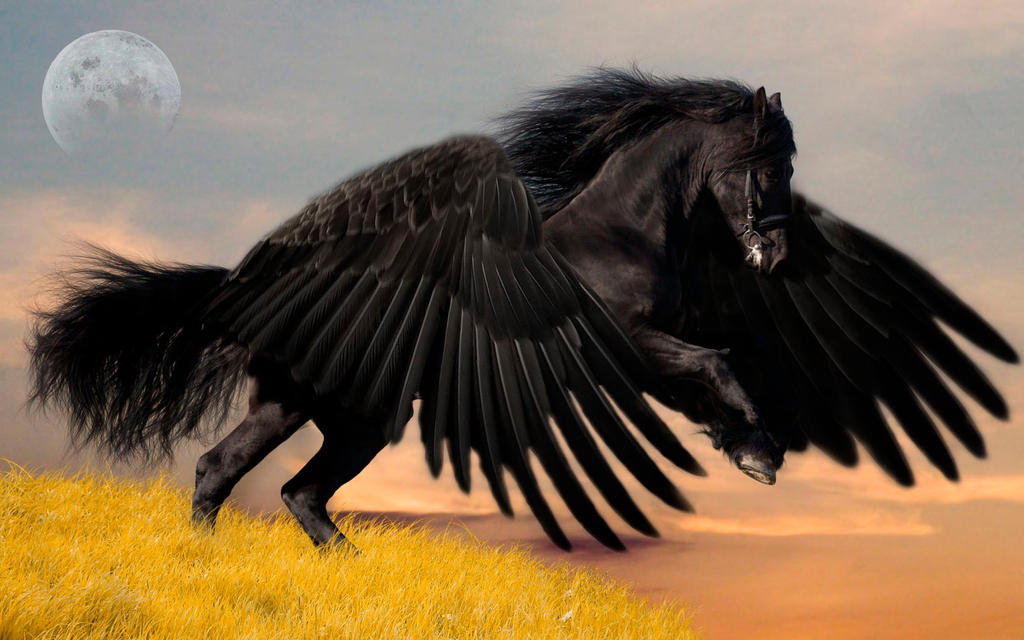 Dark Pegasus by WellRodrigues on DeviantArt