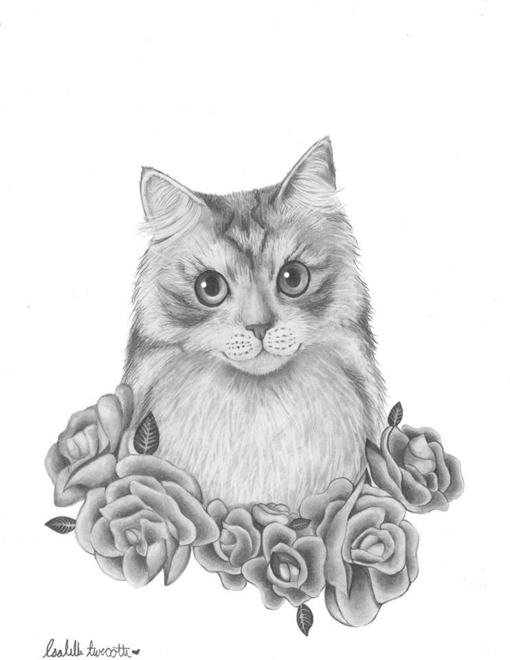 M. Stephane - My cat by IzabelleGlambert
