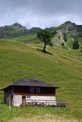 Montagnes Suisses #9 by Melanie-Melaka