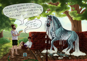 Not exactly cleaning a horse by vrania