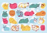 Cat Loafs
