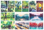 Landscapes - Summer 2021
