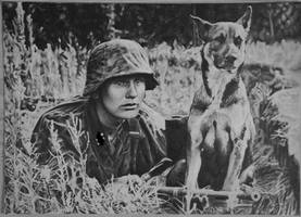 Soldier with dog
