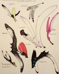 Pterosaur Doodle