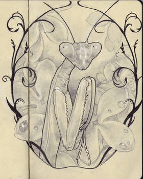 Mantis design