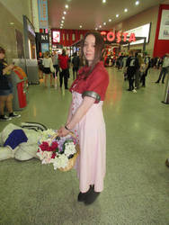 Final Fantasy VII Aerith Gainsborough