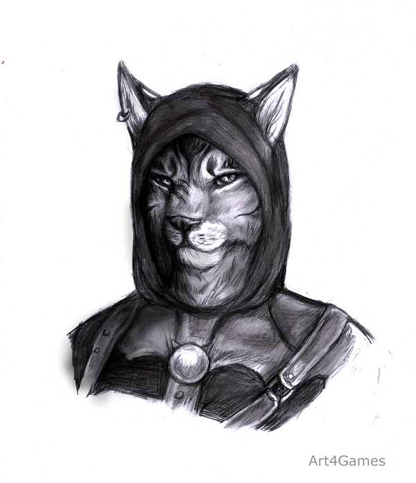 Les langues. dans Back-Ground khajiit_commission_for_dinofeliscristata_by_art4games-d5b87jo