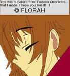 Sakura from Tsubasa Chronicles by MissFlorah