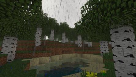 So Much Rain...