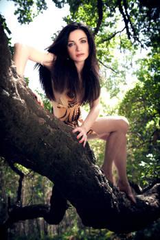 Jungle fever 3