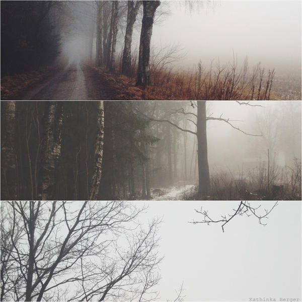 FOG by TheSweetBlackMadness