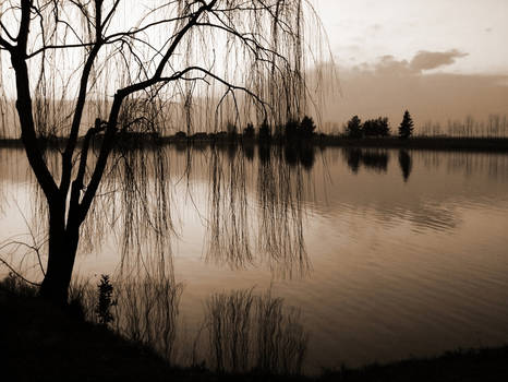 11.Reflection