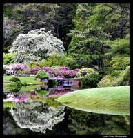 Asticou Gardens by BelaBoosMim