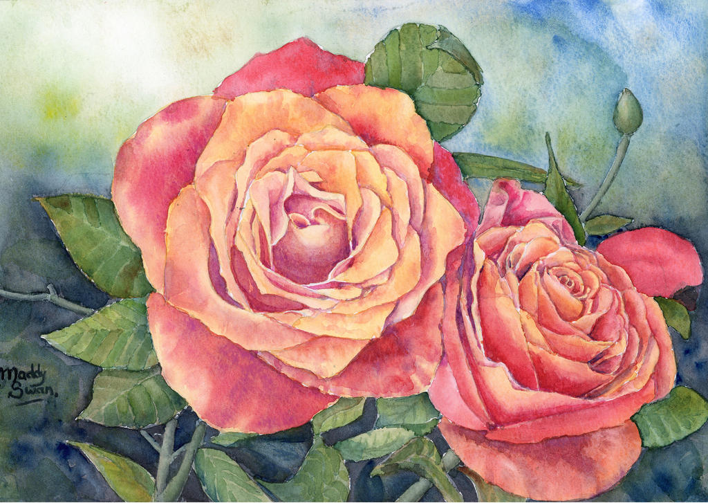 Red roses no 2 watercolour painting by maddyswan on for How to paint a rose in watercolour