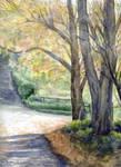Autumn Sunshine, watercolour