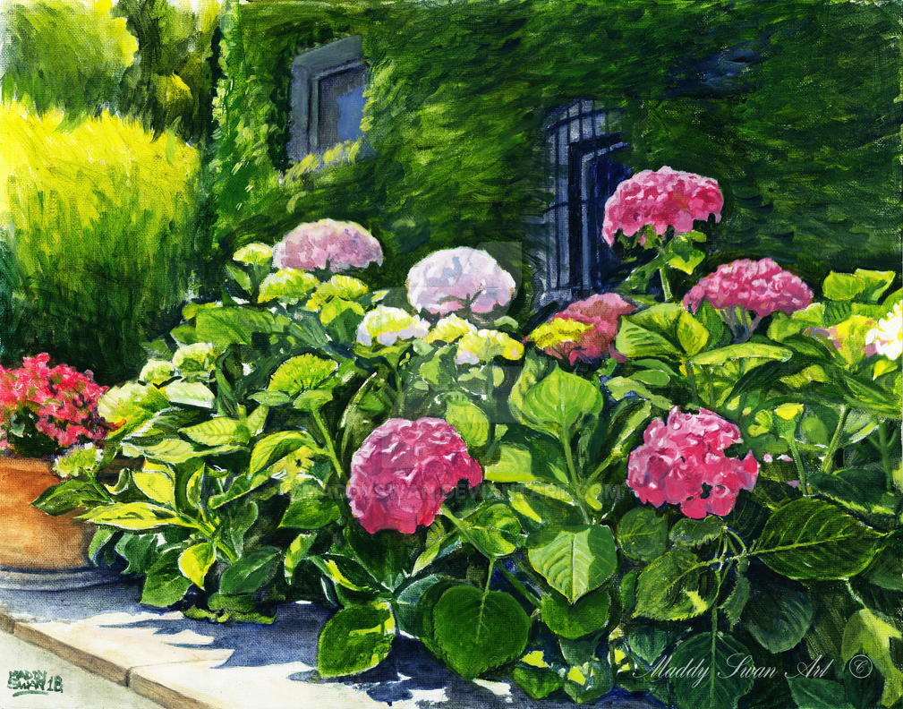 Spanish Hydrangea, acrylic by MaddySwan