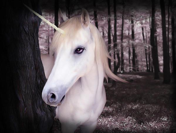 Unicorne by Saphira01