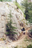 Death Mountain Trail
