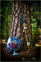 The Legend of Zelda: Ocarina of Time by LiKovacs