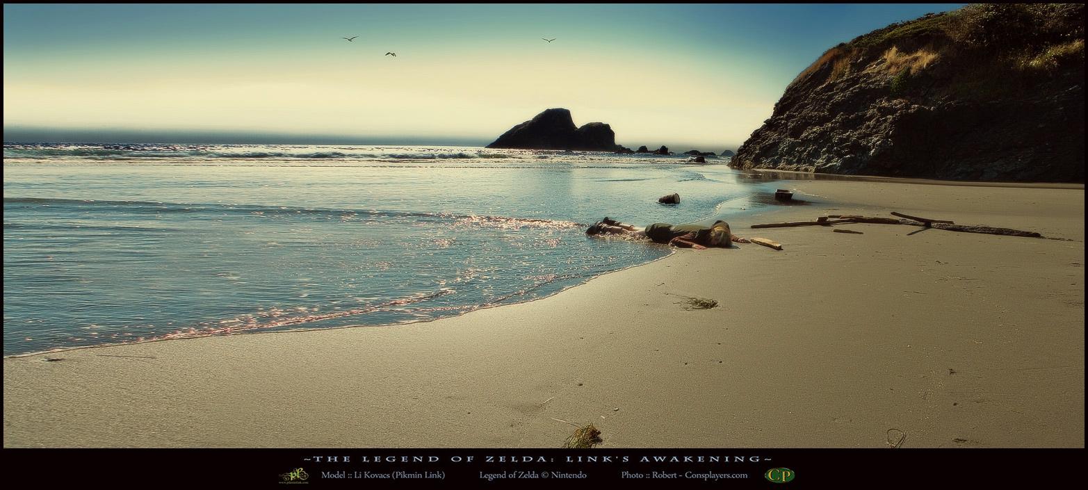 Shipwrecked - Toronbo Shores