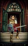 Defending Hyrule -Link Cosplay