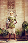 Link - The Legend of Zelda: Twilight Princess