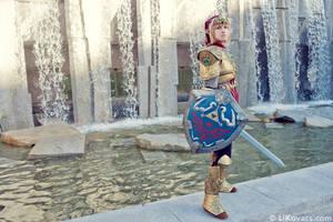 Hylian Hero - Magic Armor Link Twilight Princess by LiKovacs