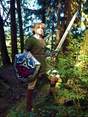 Hero of Hyrule - Twilight Princess by LiKovacs