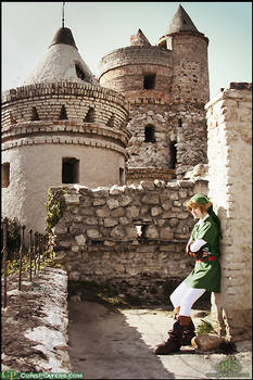 Link -Hyrule Castle