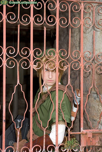 Twilight Princess Link by pikminlink