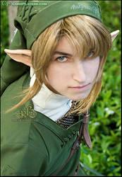 Legend of Zelda - Link Cosplay