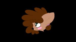 RazzleDazzle17's Profile Picture