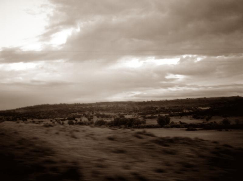 Moving Shot by Norega-eragon369