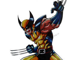 Wolverine Colors (Final) by MikeES