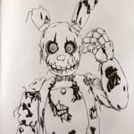 Spring Trap (no color)