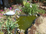 In the garden by AlphaPrimeDX
