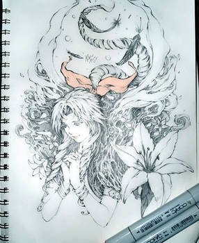 Aerith - From the sky